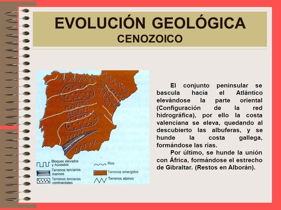 EVOLUCIÓN GEOLÓGICA CENOZOICO