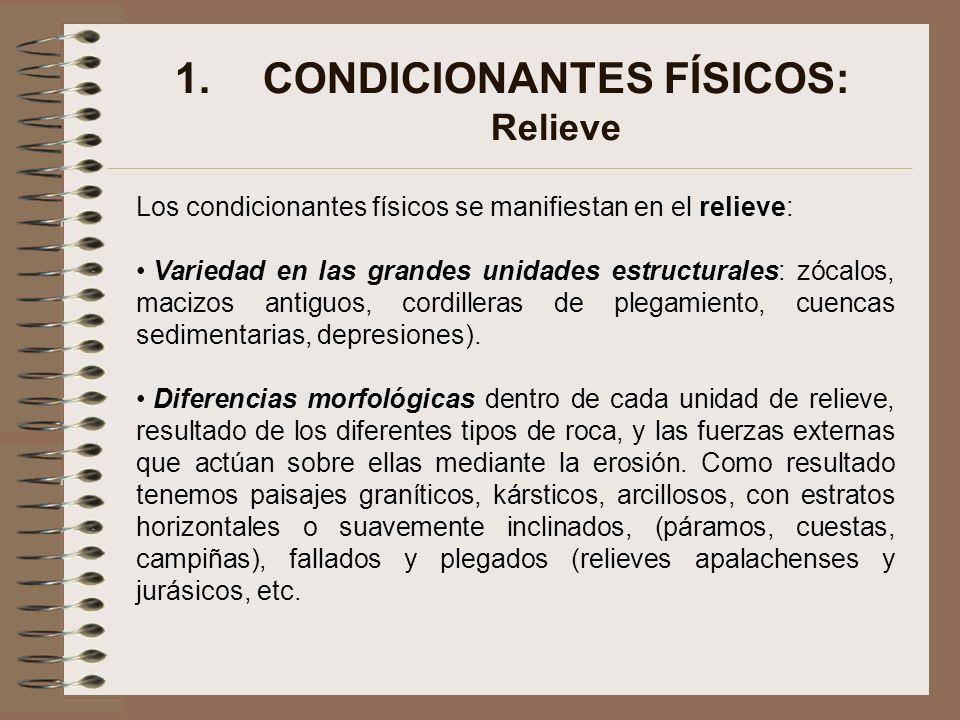 CONDICIONANTES FÍSICOS: Relieve