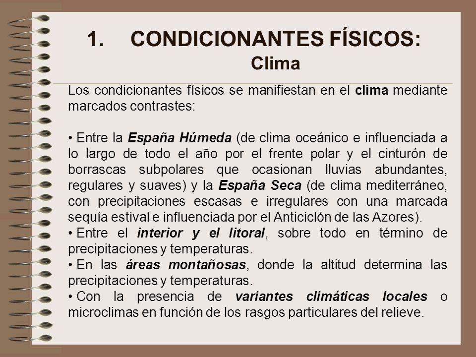 CONDICIONANTES FÍSICOS: Clima