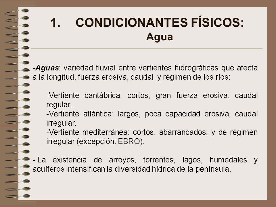 CONDICIONANTES FÍSICOS: Agua