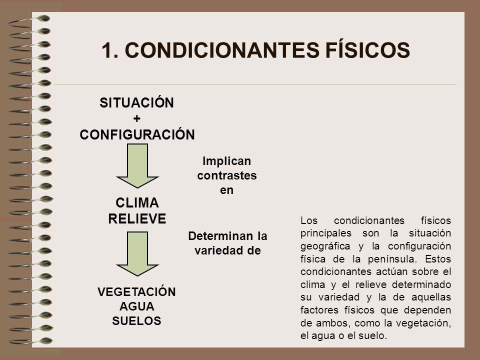 1. CONDICIONANTES FÍSICOS