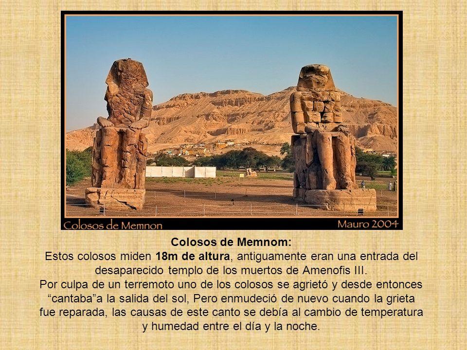 Colosos de Memnom: Estos colosos miden 18m de altura, antiguamente eran una entrada del desaparecido templo de los muertos de Amenofis III.