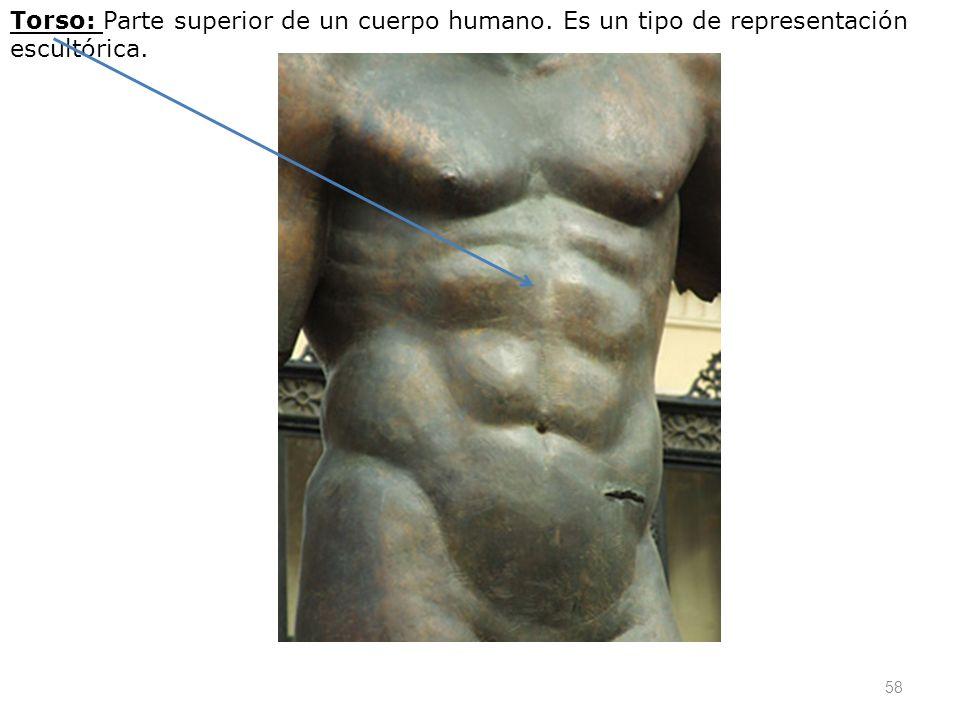Torso: Parte superior de un cuerpo humano