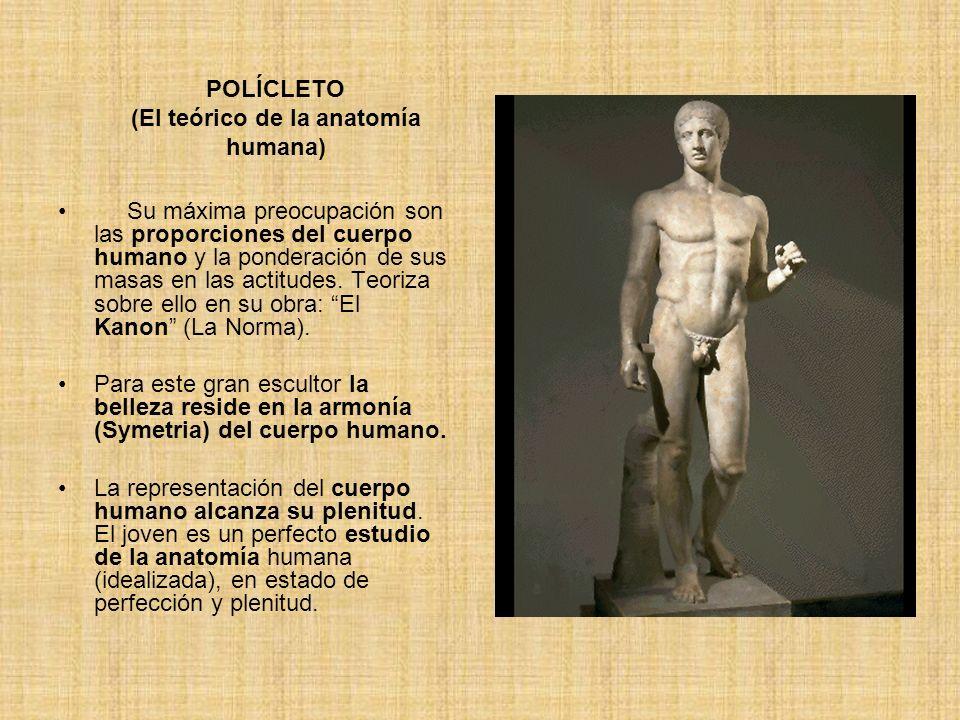POLÍCLETO (El teórico de la anatomía humana)