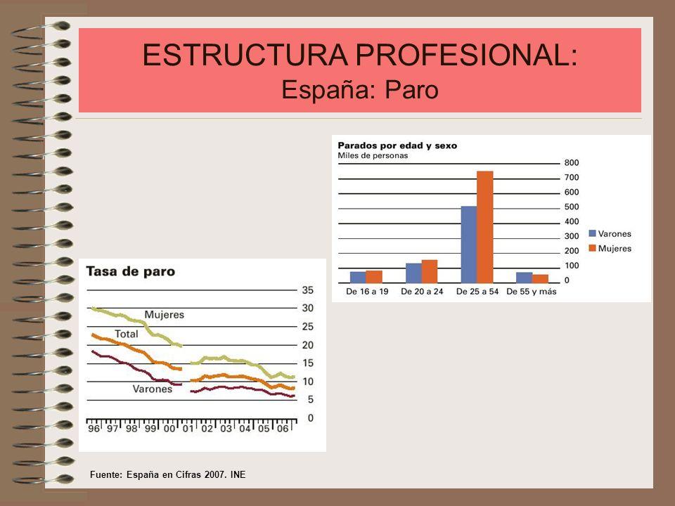ESTRUCTURA PROFESIONAL: España: Paro