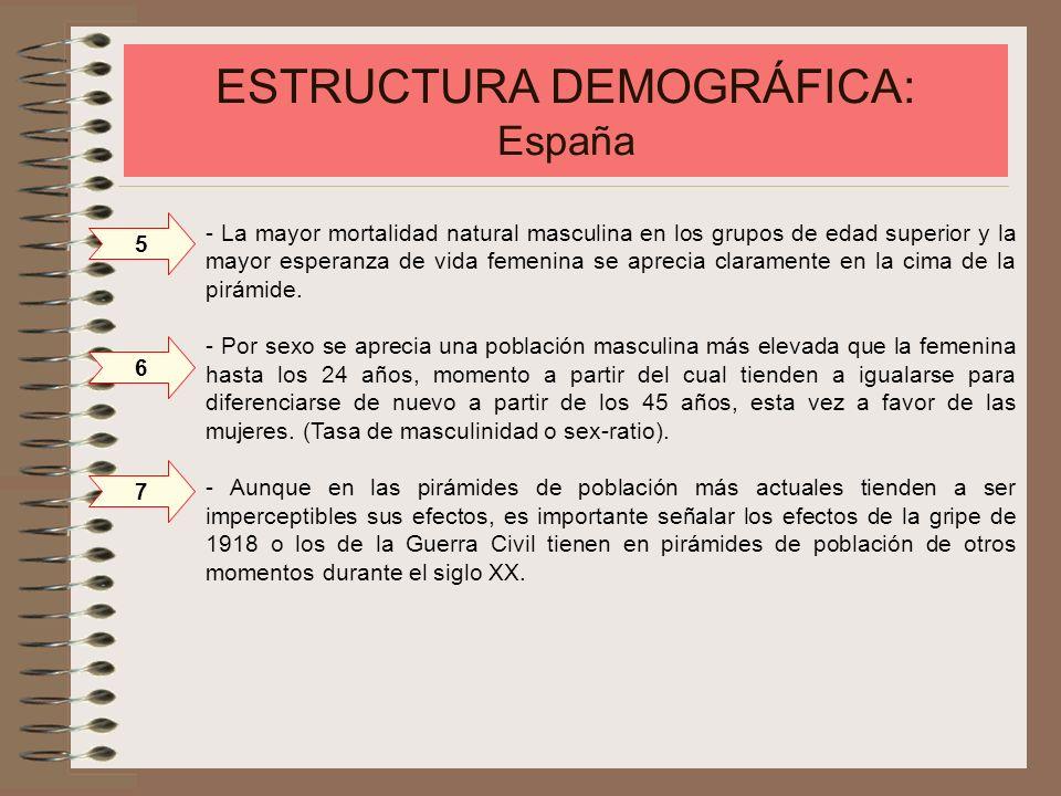ESTRUCTURA DEMOGRÁFICA: España