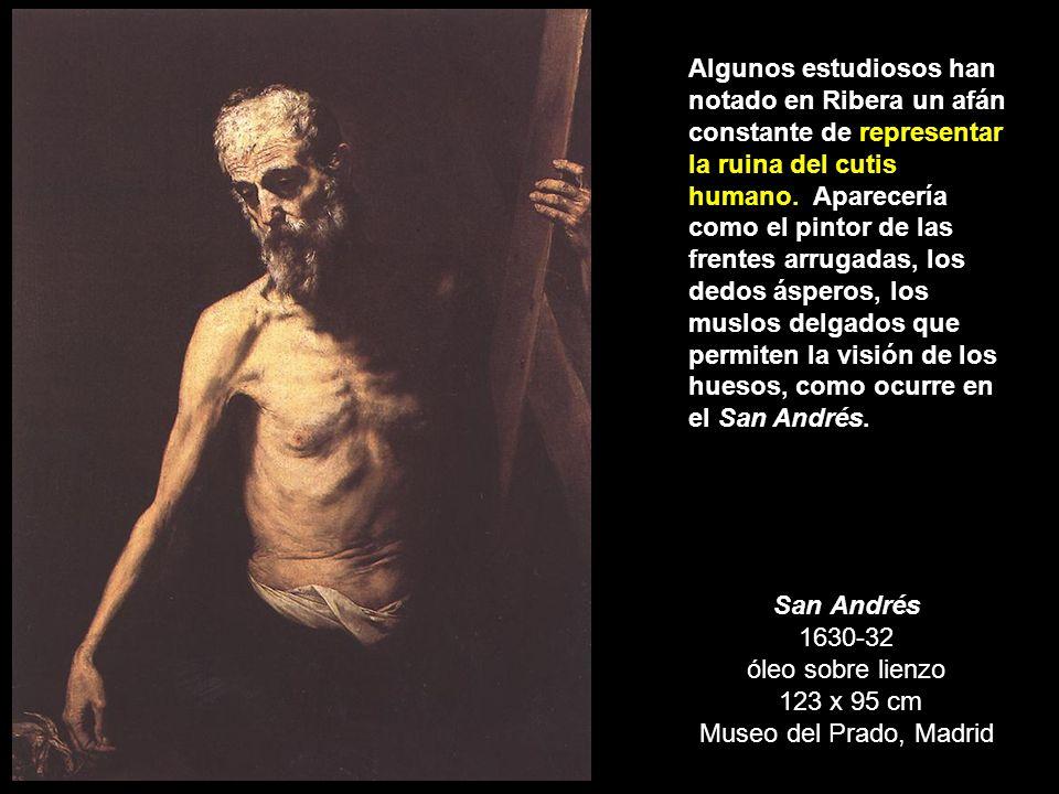 Algunos estudiosos han notado en Ribera un afán constante de representar la ruina del cutis humano. Aparecería como el pintor de las frentes arrugadas, los dedos ásperos, los muslos delgados que permiten la visión de los huesos, como ocurre en el San Andrés.