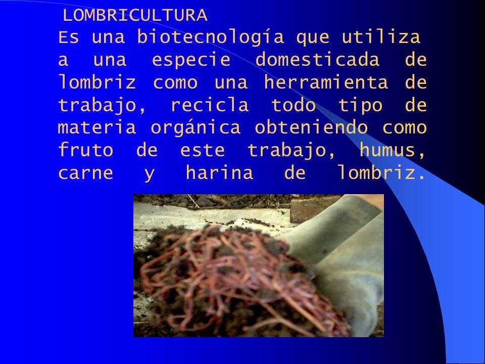 LOMBRICULTURA Es una biotecnología que utiliza.