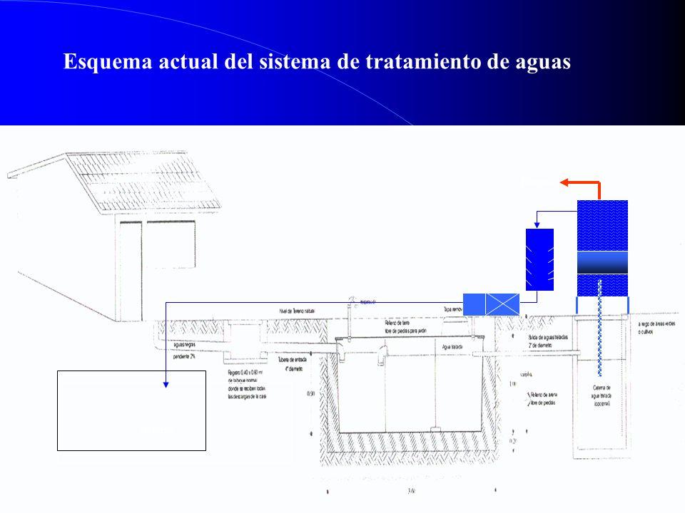 Esquema actual del sistema de tratamiento de aguas