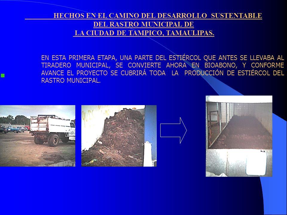 HECHOS EN EL CAMINO DEL DESARROLLO SUSTENTABLE DEL RASTRO MUNICIPAL DE