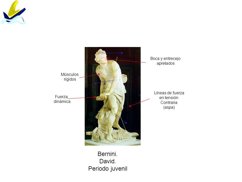 Bernini. David. Periodo juvenil Boca y entrecejo apretados Músculos