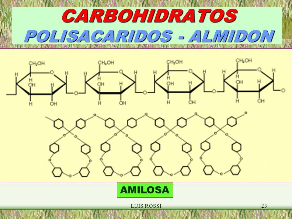 CARBOHIDRATOS POLISACARIDOS - ALMIDON