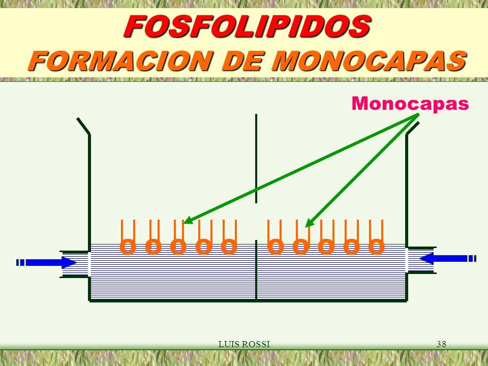 FOSFOLIPIDOS FORMACION DE MONOCAPAS