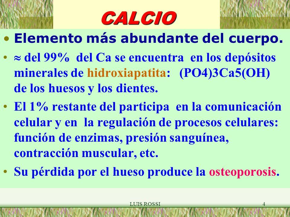CALCIO Elemento más abundante del cuerpo.