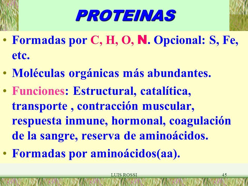 PROTEINAS Formadas por C, H, O, N. Opcional: S, Fe, etc.