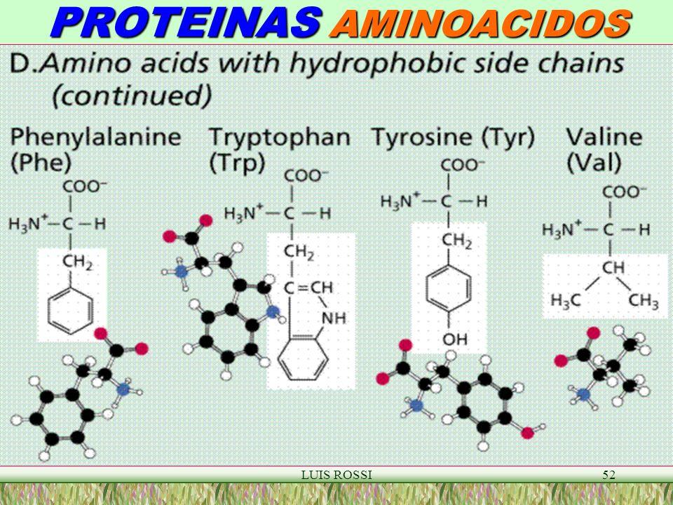 PROTEINAS AMINOACIDOS