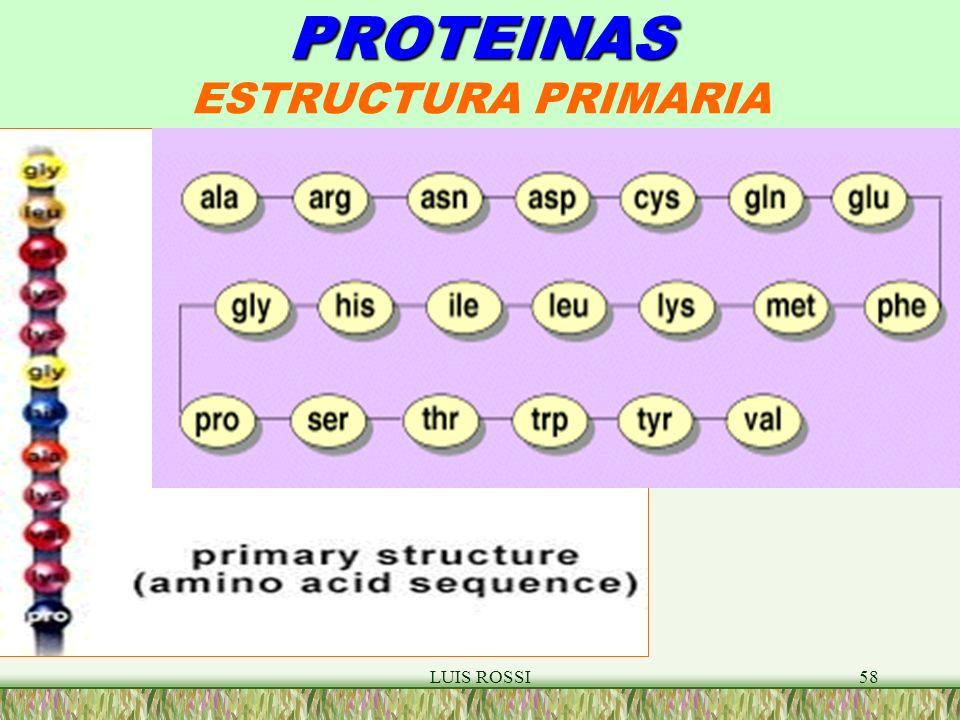 PROTEINAS ESTRUCTURA PRIMARIA