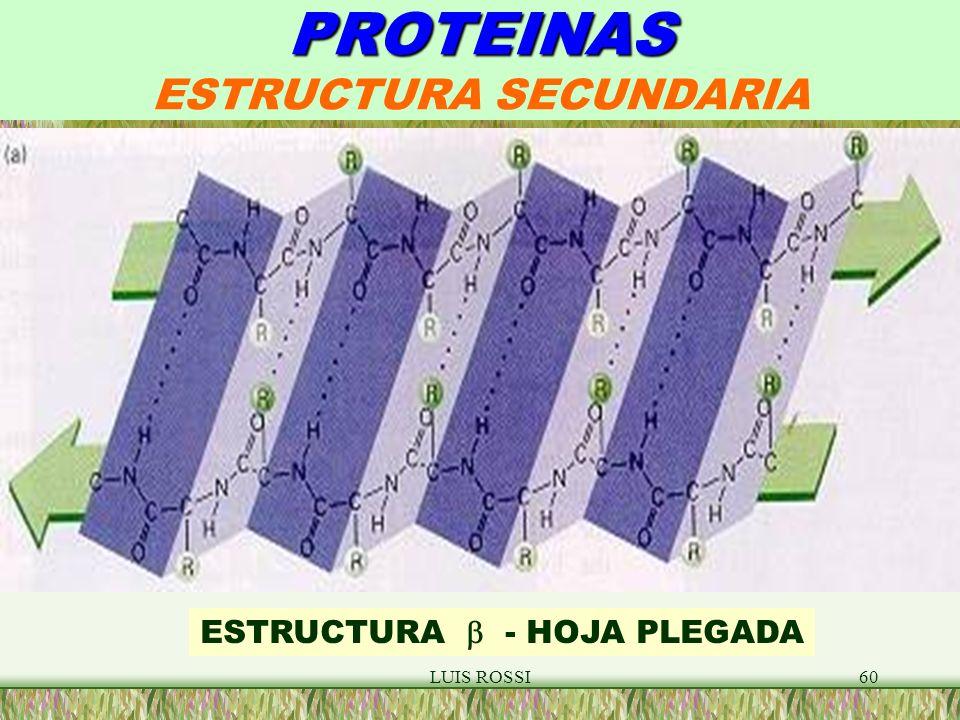PROTEINAS ESTRUCTURA SECUNDARIA