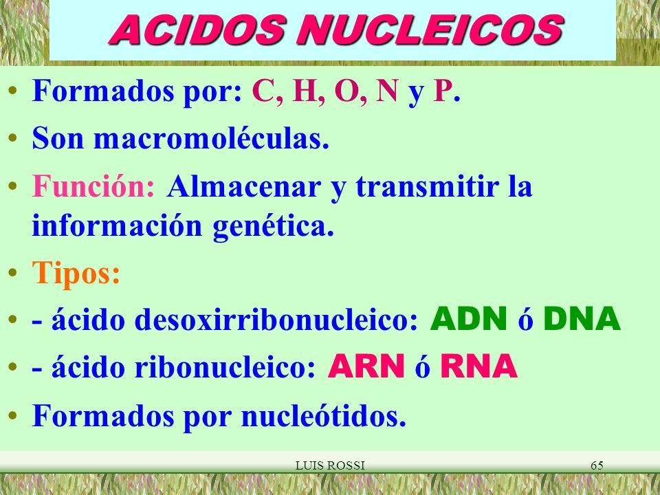 ACIDOS NUCLEICOS Formados por: C, H, O, N y P. Son macromoléculas.