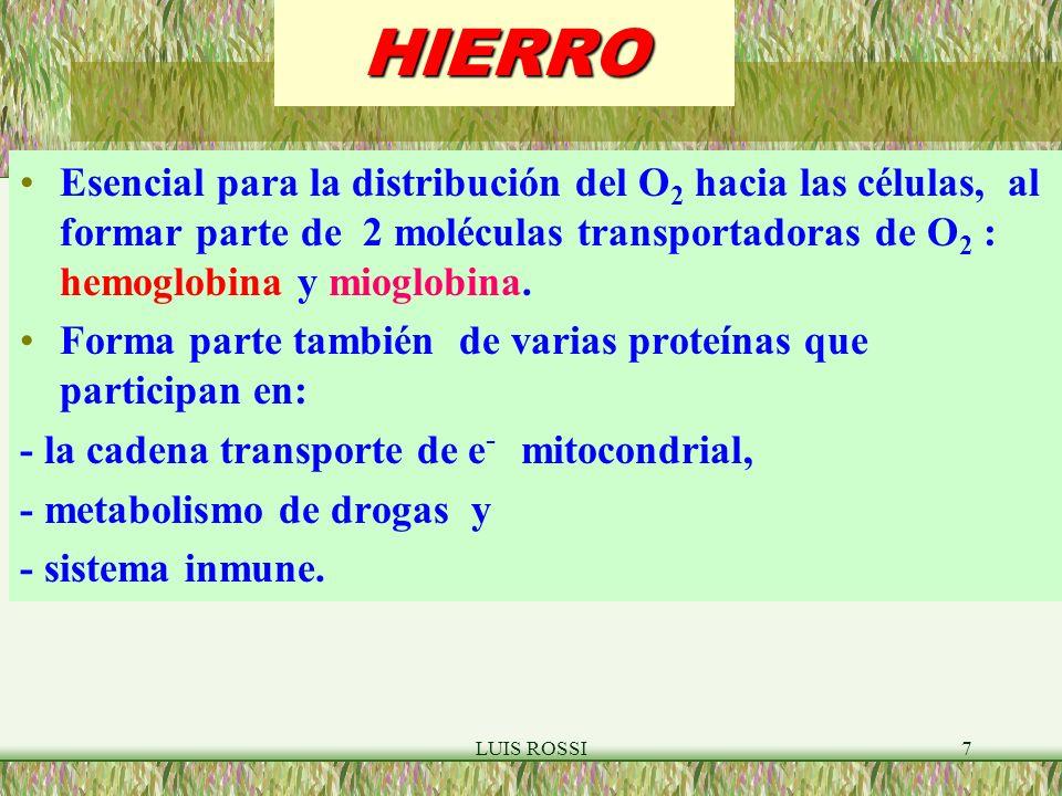 HIERRO Esencial para la distribución del O2 hacia las células, al formar parte de 2 moléculas transportadoras de O2 : hemoglobina y mioglobina.