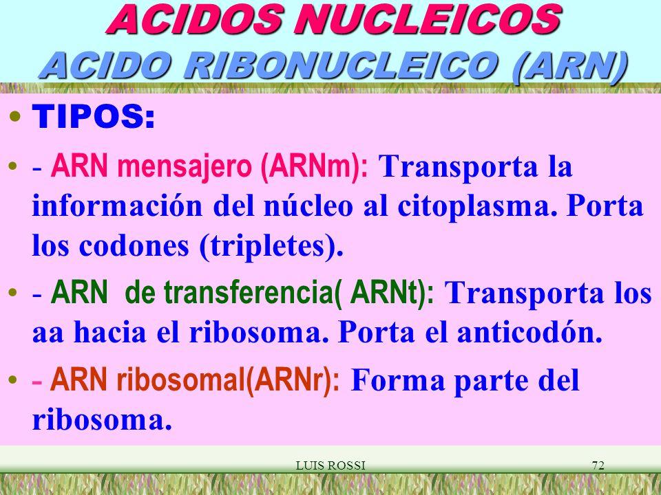 ACIDOS NUCLEICOS ACIDO RIBONUCLEICO (ARN)