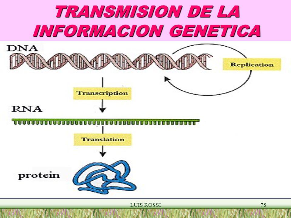 TRANSMISION DE LA INFORMACION GENETICA