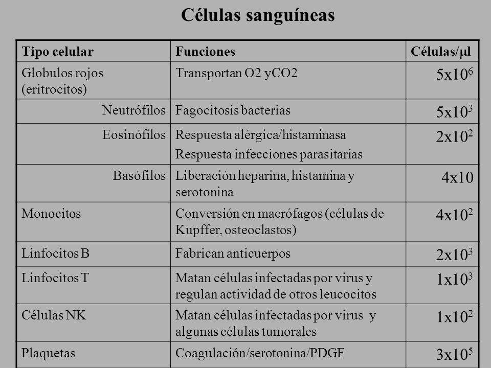 Células sanguíneas 5x106 5x103 2x102 4x10 4x102 2x103 1x103 1x102
