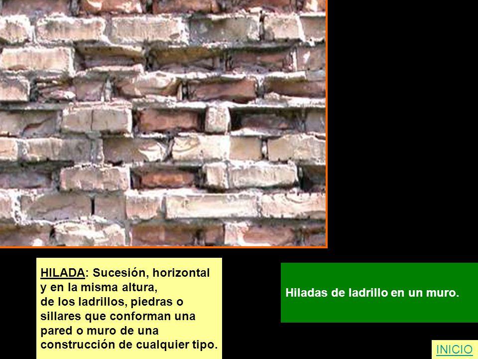 HILADA: Sucesión, horizontal