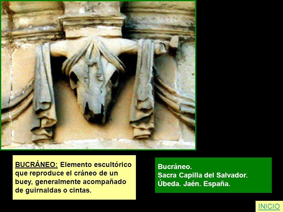 BUCRÁNEO: Elemento escultórico