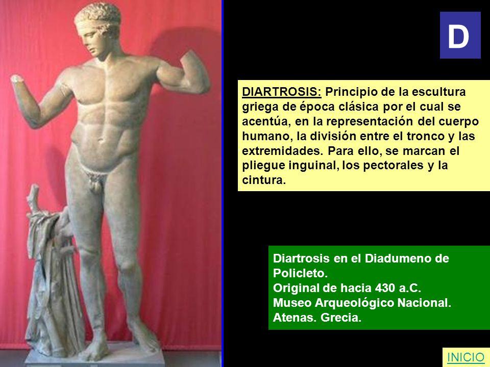 D DIARTROSIS: Principio de la escultura