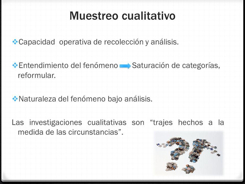 Muestreo cualitativo Capacidad operativa de recolección y análisis.
