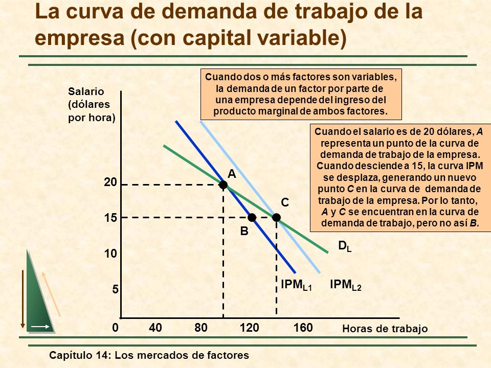 La curva de demanda de trabajo de la empresa (con capital variable)