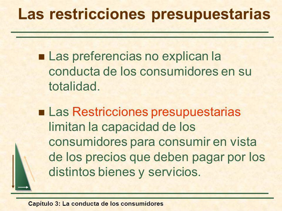Las restricciones presupuestarias