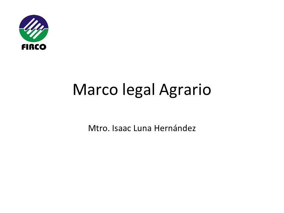 Mtro. Isaac Luna Hernández