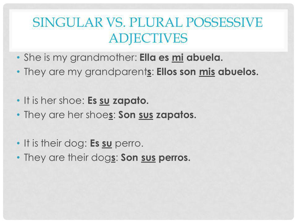 Singular vs. Plural Possessive Adjectives