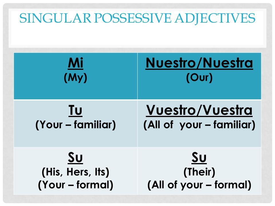 Singular Possessive Adjectives