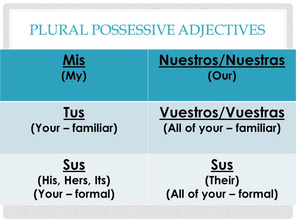 Plural Possessive Adjectives