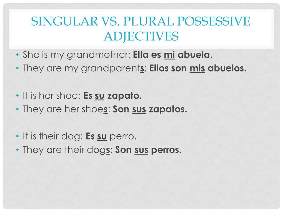 Singular vs. Plural Possessive Adjectives