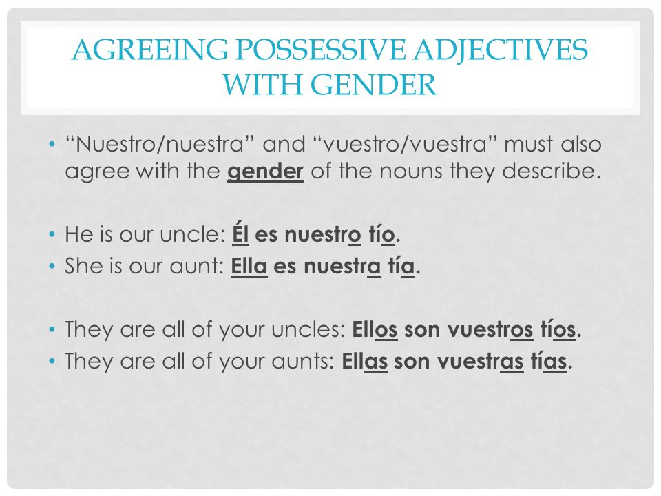 Agreeing Possessive Adjectives with Gender