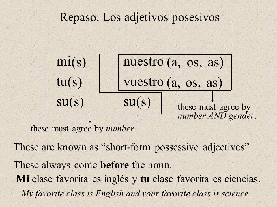 Repaso: Los adjetivos posesivos