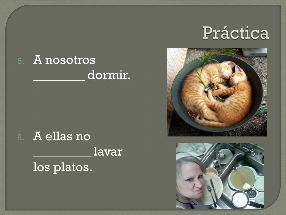 Práctica A nosotros ________ dormir.