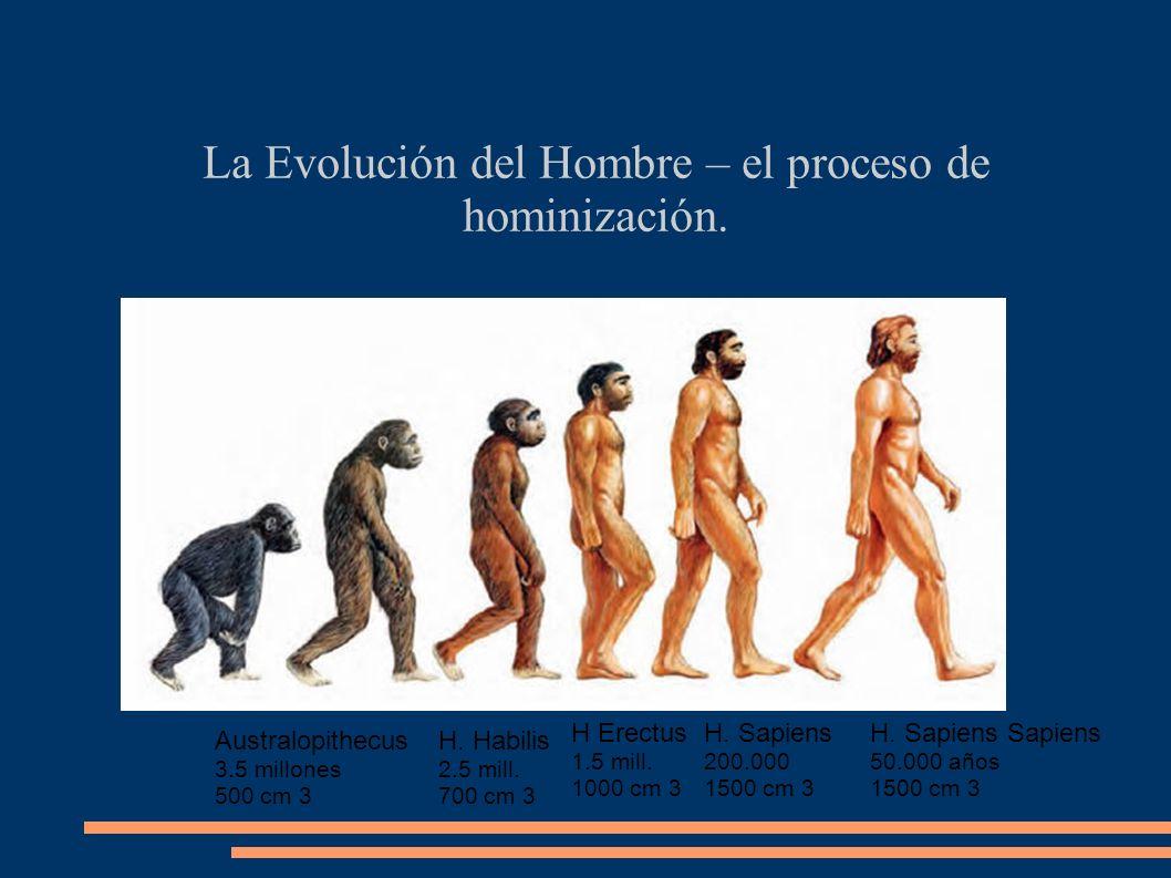 La Evolución del Hombre – el proceso de hominización.