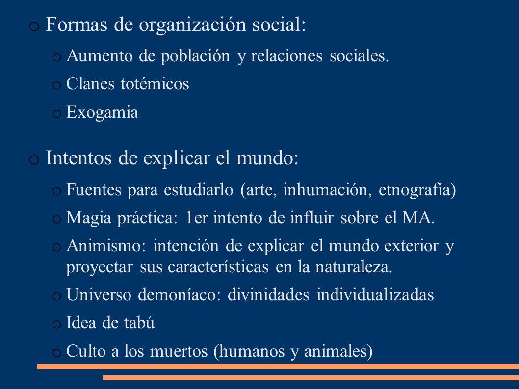 Formas de organización social: