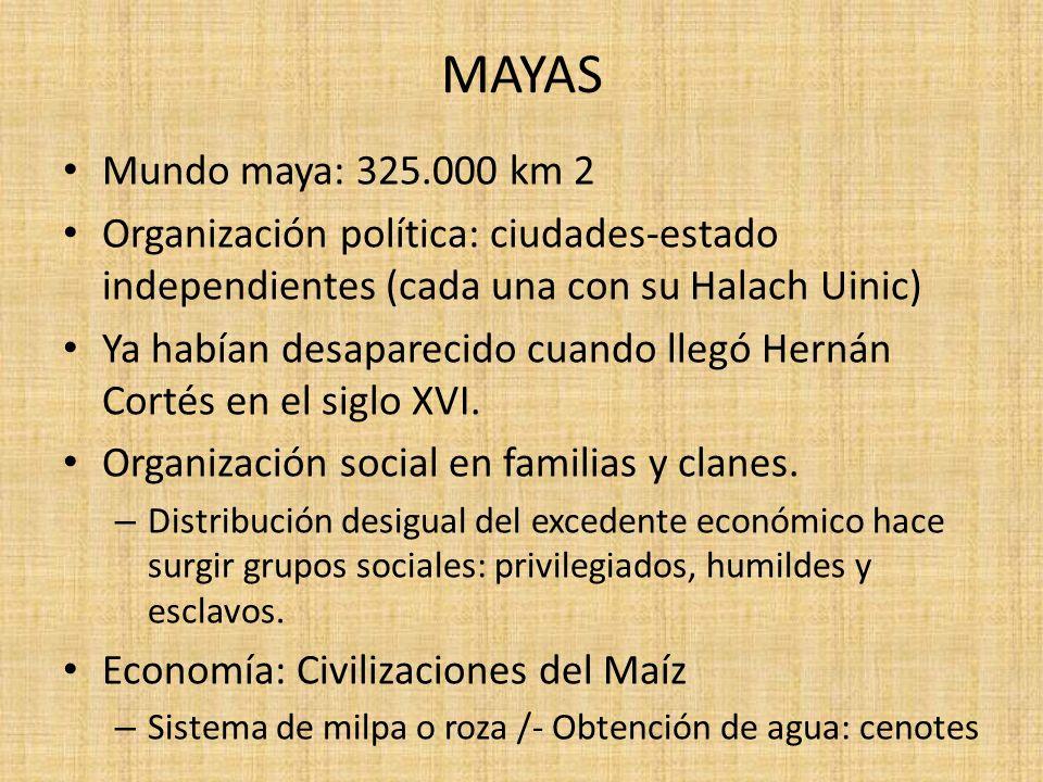 MAYAS Mundo maya: 325.000 km 2. Organización política: ciudades-estado independientes (cada una con su Halach Uinic)