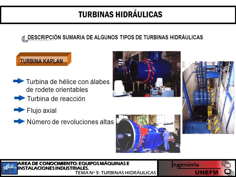 TURBINAS HIDRÁULICAS DESCRIPCIÓN SUMARIA DE ALGUNOS TIPOS DE TURBINAS HIDRÁULICAS. TURBINA KAPLAN.