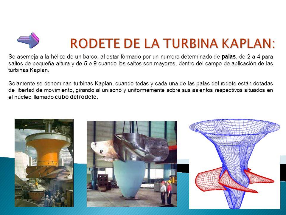 RODETE DE LA TURBINA KAPLAN:
