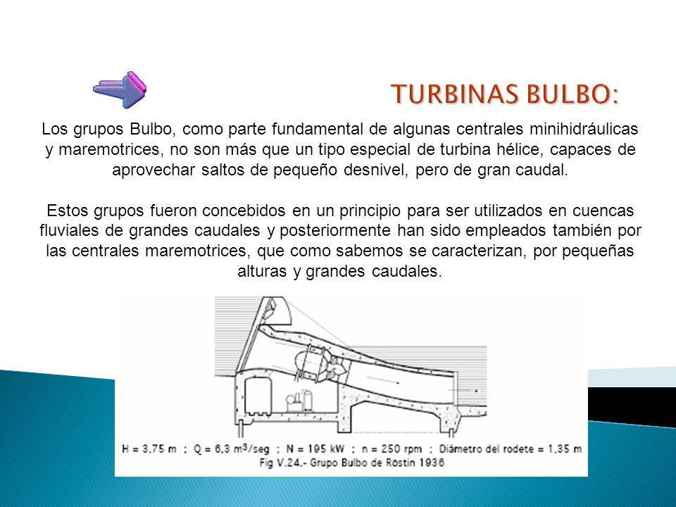 TURBINAS BULBO: