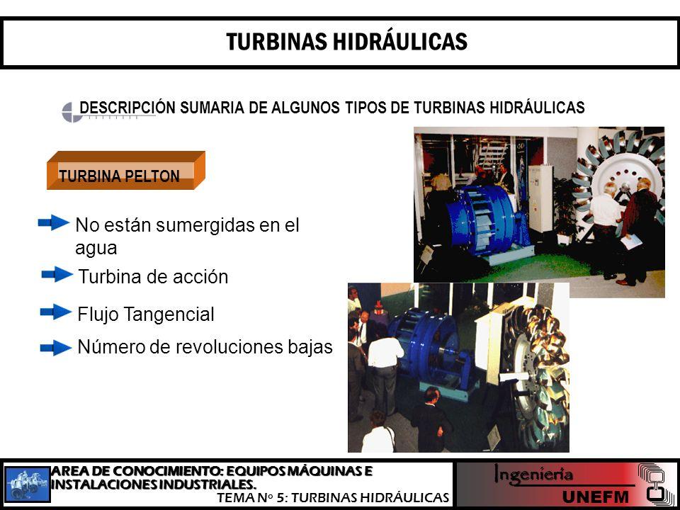TURBINAS HIDRÁULICAS No están sumergidas en el agua Turbina de acción