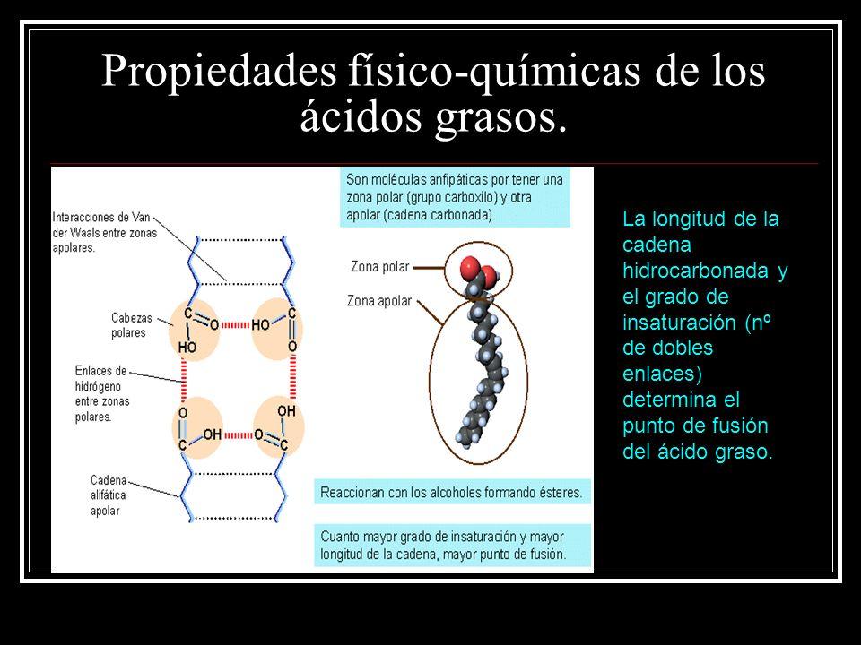Propiedades físico-químicas de los ácidos grasos.