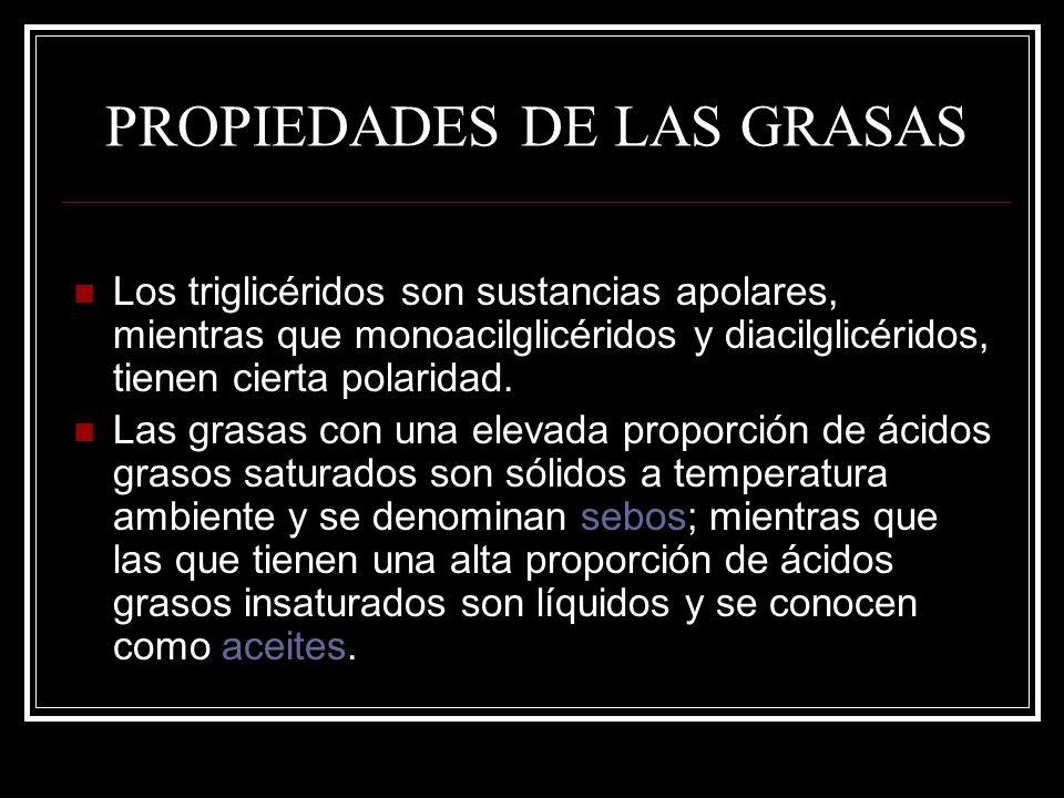 PROPIEDADES DE LAS GRASAS